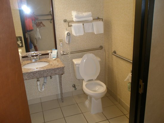Baymont Inn & Suites Louisville South I 65: Handicapped toilet