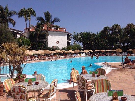 Hotel Parque Tropical : Piscina