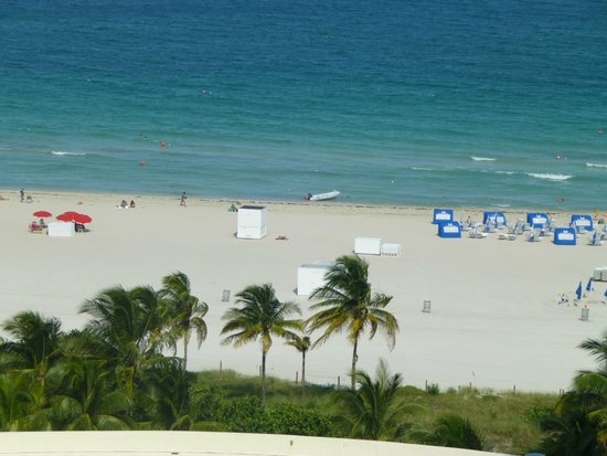 Loews Miami Beach Hotel: view from room