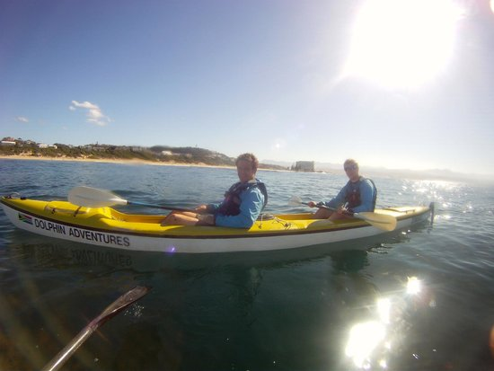 Dolphin Adventures: Kayaking about 20m from mating whales.