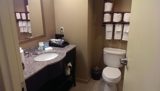 Hampton Inn Baltimore-Downtown-Convention Center: Sink/Toilet