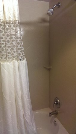Hampton Inn Baltimore-Downtown-Convention Center: Shower