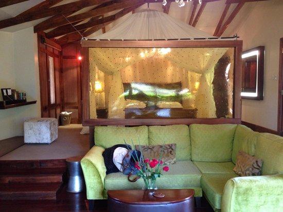Arusha Coffee Lodge : Beautiful suite