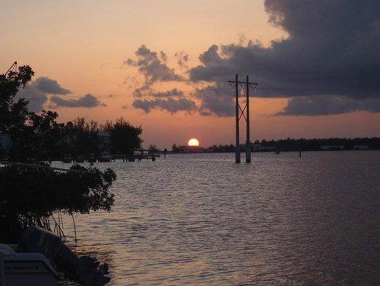 Banana Bay Resort - Key West: Vista del muelle del hotel