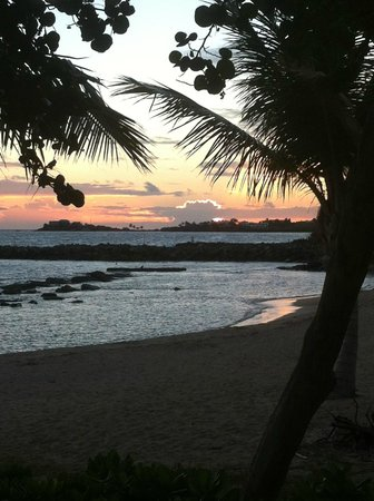 Tamarind Reef Resort, Spa & Marina : Tamarind Sunset