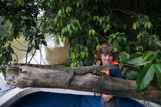 Osman's Homestay: Close encounter with a monitor lizard