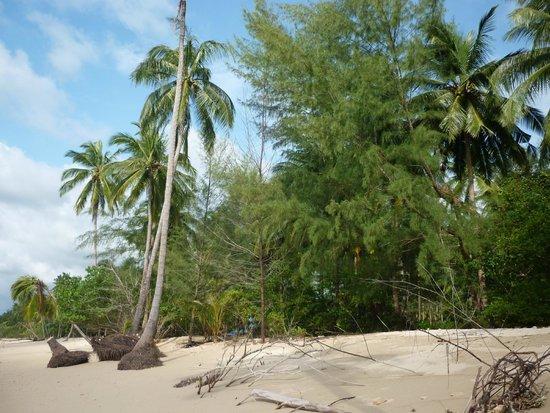 Nang Thong Bay Resort: nabij whit sant beatch