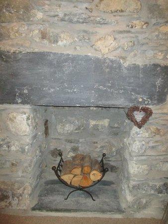 Dolffanog Fawr: Our fire place