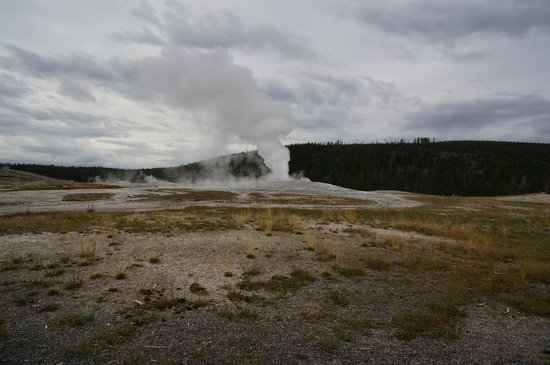 Old Faithful Snow Lodge and Cabins: Old Faithful starting to erupt