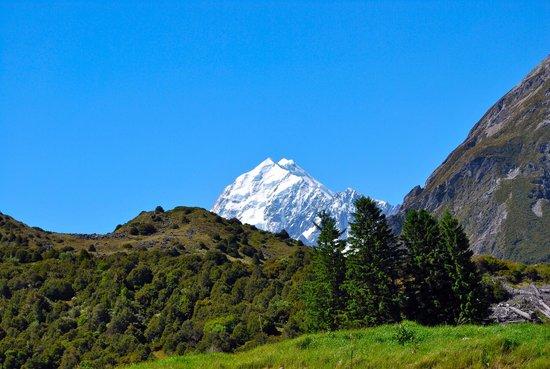 Aoraki/Mt. Cook: Mount Cook