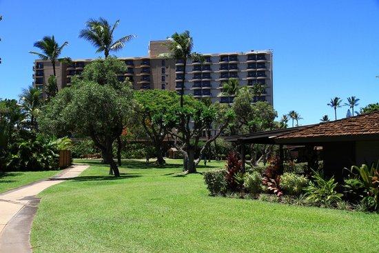 Royal Lahaina Resort: Blick von den Gartenbungalows aufs Hotel