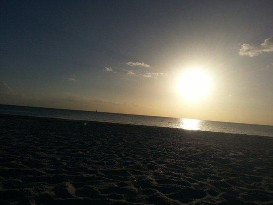 Clearwater Beach Hotel : clearwater beach