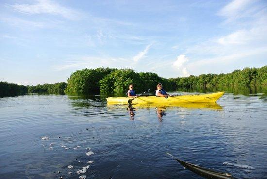 Everglades Rentals & Eco Adventures: Evergaldes