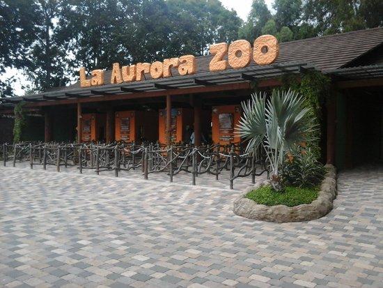 La Aurora Zoo: 2