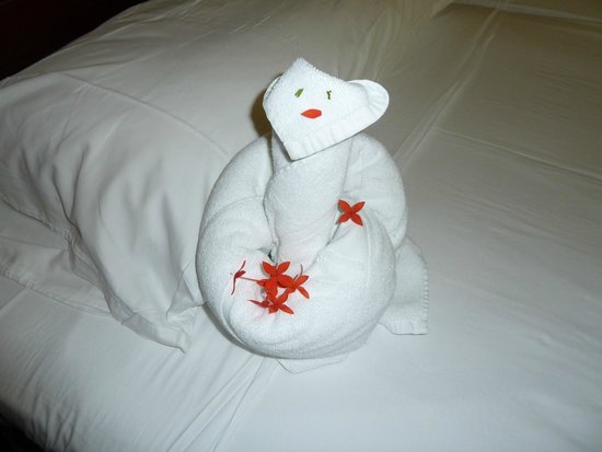 Paradisus Rio de Oro Resort & Spa: Täglich neue Handtuchgestaltungen :)