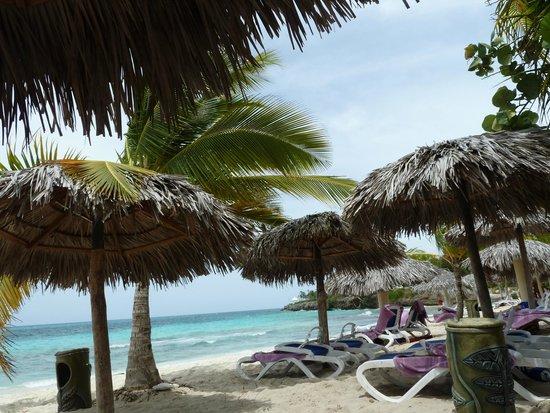 Paradisus Rio de Oro Resort & Spa: Blick von der Strandliege - Strand sehr sauber