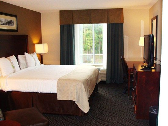 Holiday Inn Dothan: Guest Room