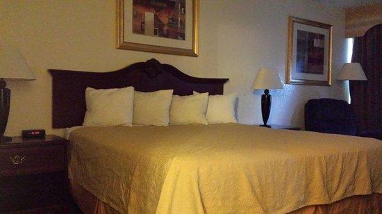 Econo Lodge : Guest Room