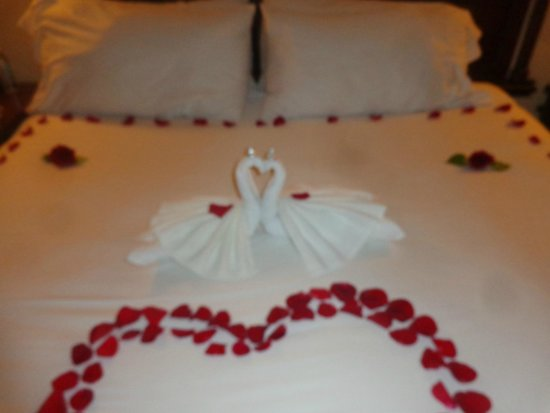 The Royal Playa del Carmen: Towel origami left by the maid every evening