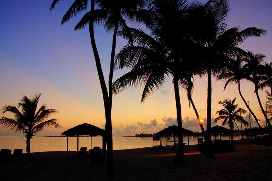 Breezes Resort & Spa Bahamas : Cable beach sunrise