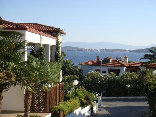 Hotel Alexandros Palace Tripadvisor