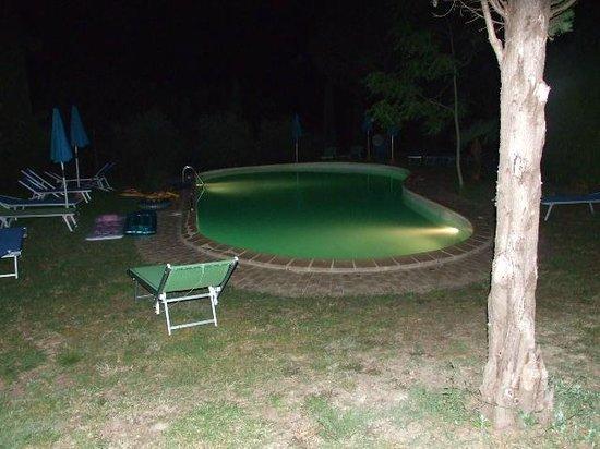 Agriturismo Quarantallina: la piscina di sera