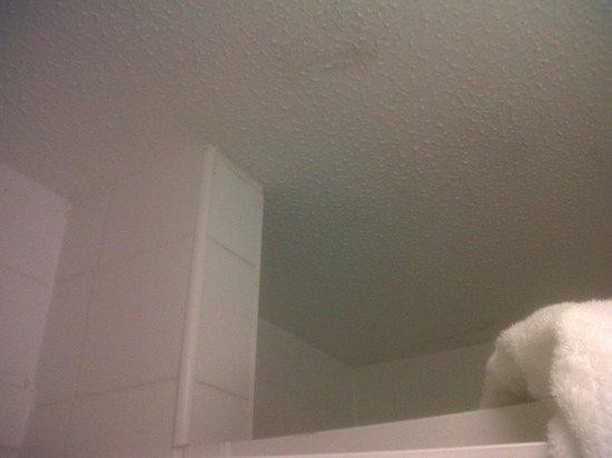 Celtic Royal Hotel: bathroom ceiling