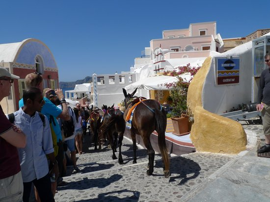 Hotel Thira and Apartments: Cable Car or Donkey