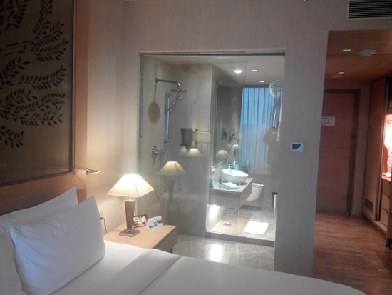Radisson Blu Hotel New Delhi Dwarka: Cramped toilets and Basin area,