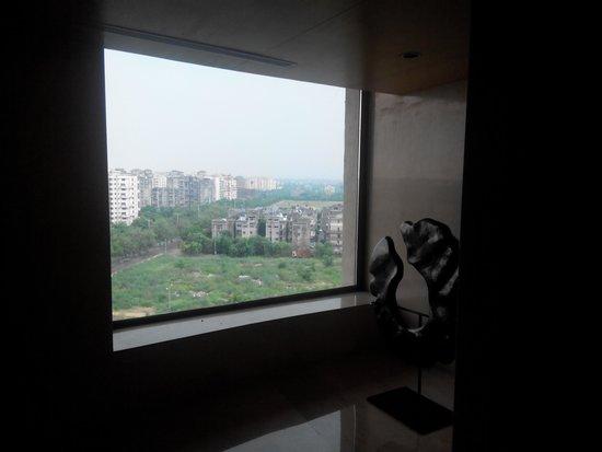 Radisson Blu Hotel New Delhi Dwarka: Beautiful view from the lobby