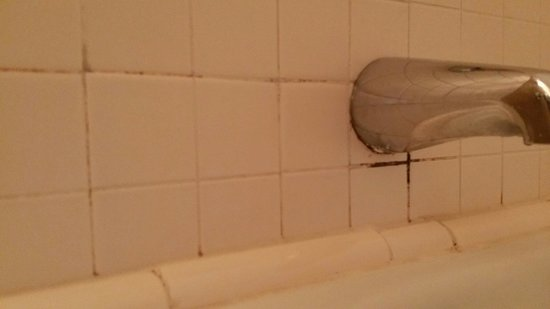 Fitger's Inn: Showers were filthy. Mold in the grout and hair still in the tub. $250 a night!