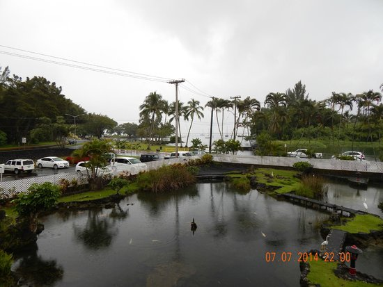 Hilo Seaside Hotel: Early AM view from the room.