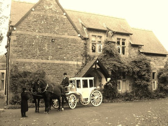 St. David's Guest House: wedding