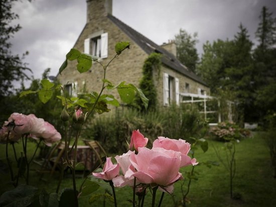 An American In Brittany Bed & Breakfast: B&B view garden