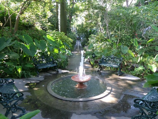 Giardini La Mortella: fontane
