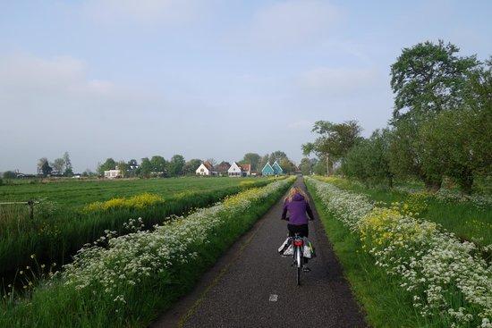 Op de Horsten: Neighborhood
