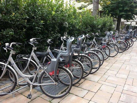 Hotel Dory: bici a disposzione clienti