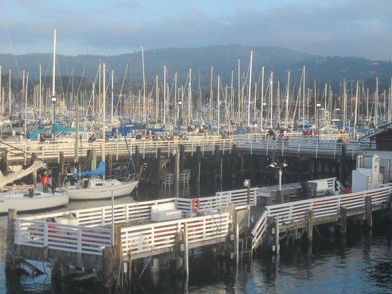 Hotel 1110: Monterey dock