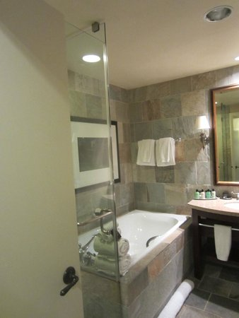 St Julien Hotel and Spa: Glass shower plus bathtub