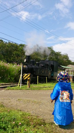 Nobeyama SL Land: SLは見て楽しみ