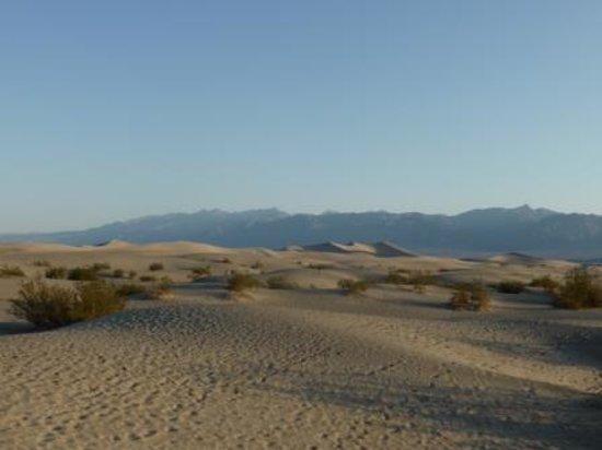 Mesquite Flat Sand Dunes : Mesquiete Flat Dunes