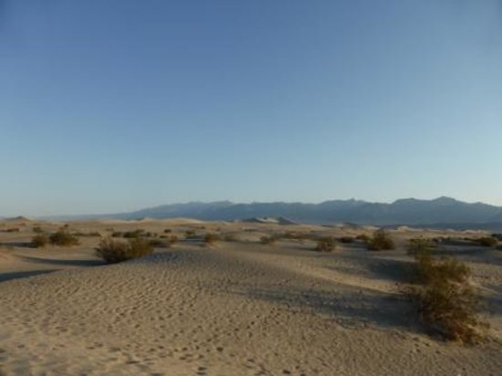 Mesquite Flat Sand Dunes : Mesquiete Flat Dunes 2
