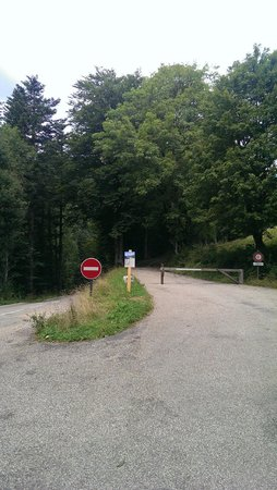Musee de la Grande Chartreuse: The way to the Monastery - walk down the road on the right