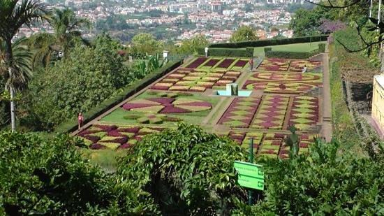 Madeira Botanical Garden: formal gardens