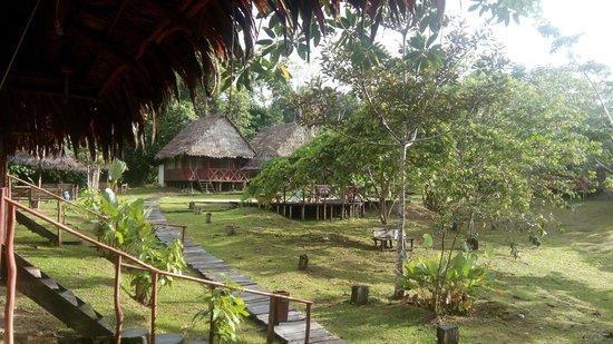 MarinAmazonica: Vista del Lodge desde el comedor