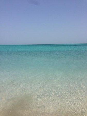 The St. Regis Saadiyat Island Resort: traumhaftes Wasser an schönem weissen Strand