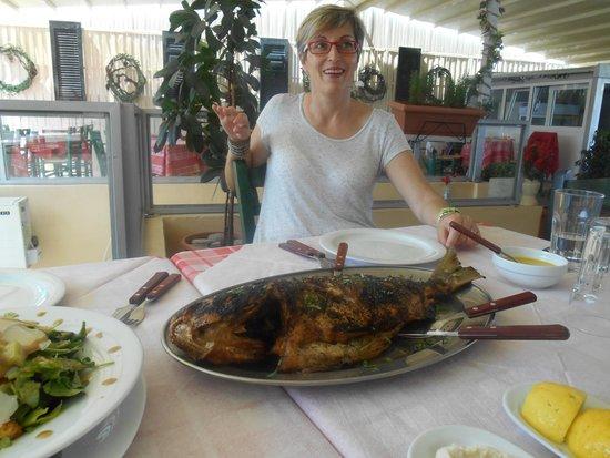 Tsipouradiko Santorinis: Grilled Giant Bream