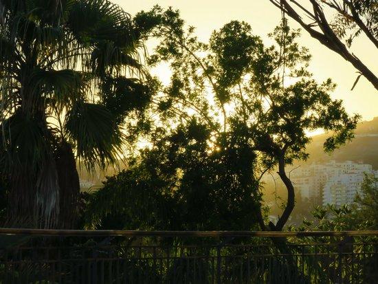Quinta Das Vistas Palace Gardens: Terrasse au dîner (sunset)