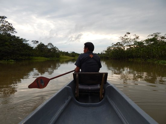 Sani Lodge: Birding Guide