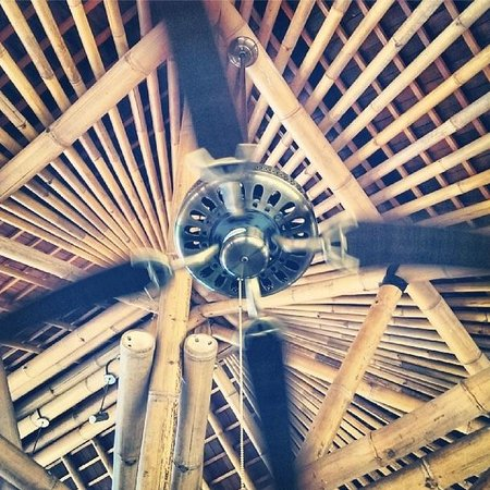 Shelter Bali: Cool roof